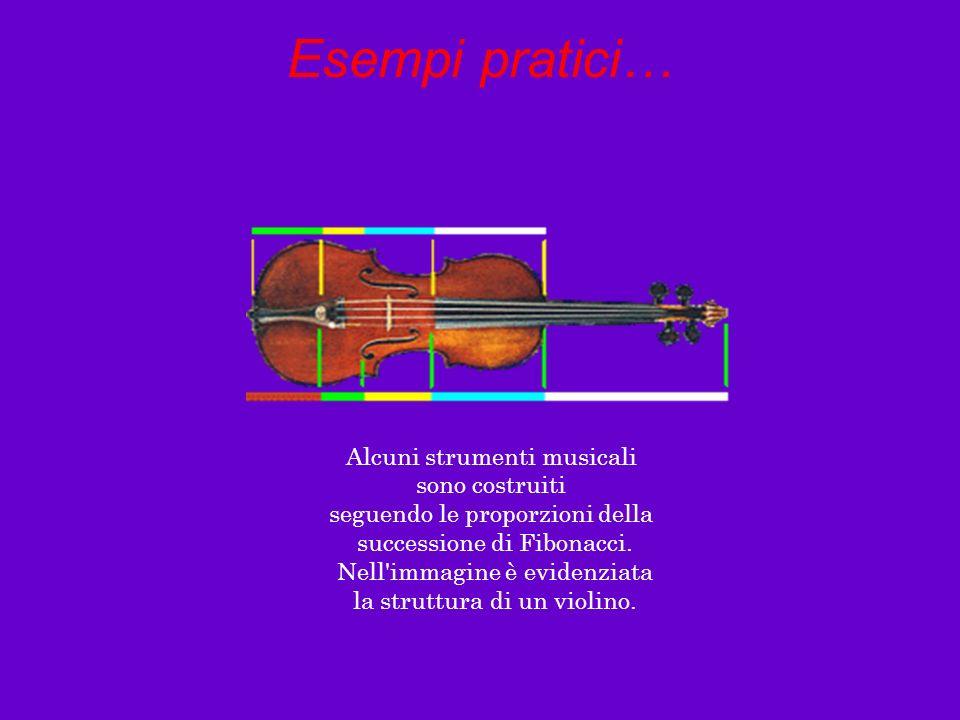 Esempi pratici… Alcuni strumenti musicali sono costruiti
