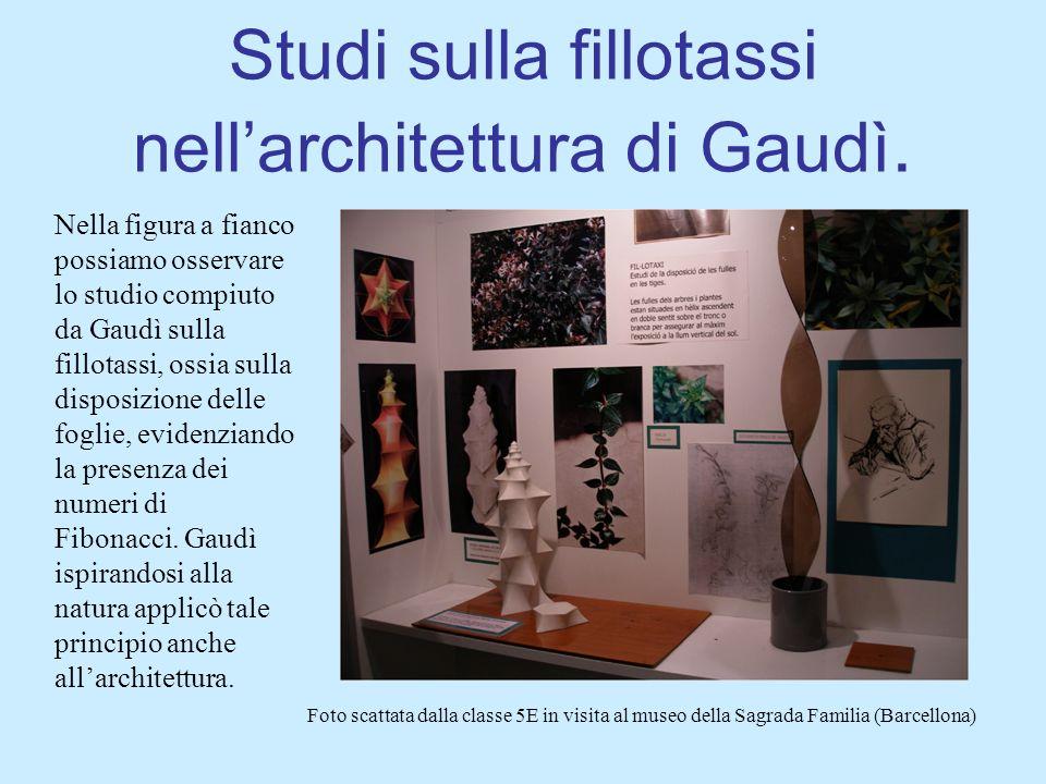 Studi sulla fillotassi nell'architettura di Gaudì.
