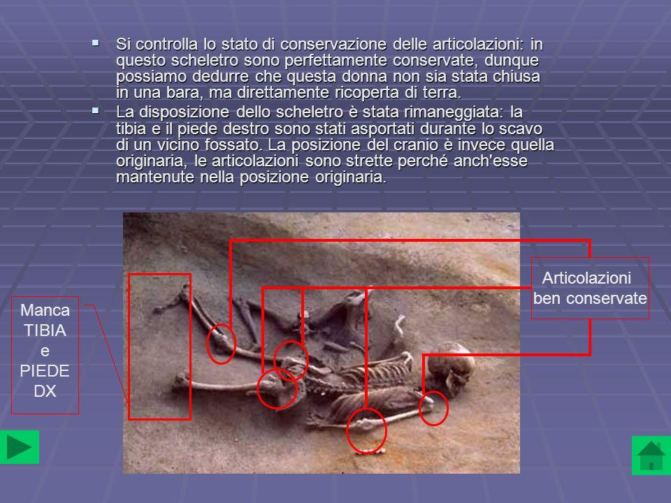 Si controlla lo stato di conservazione delle articolazioni: in questo scheletro sono perfettamente conservate, dunque possiamo dedurre che questa donna non sia stata chiusa in una bara, ma direttamente ricoperta di terra.