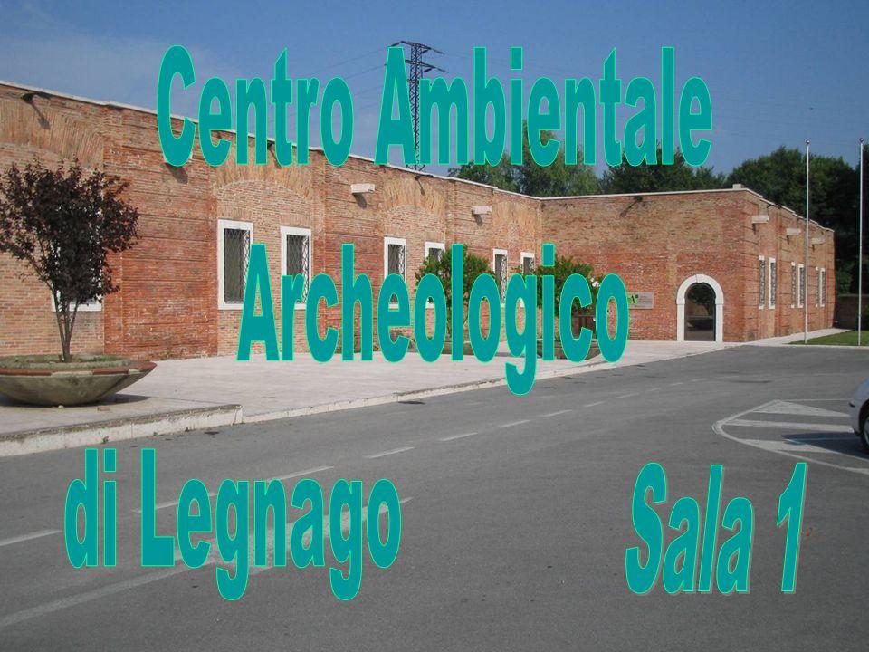 Centro Ambientale Archeologico di Legnago Sala 1