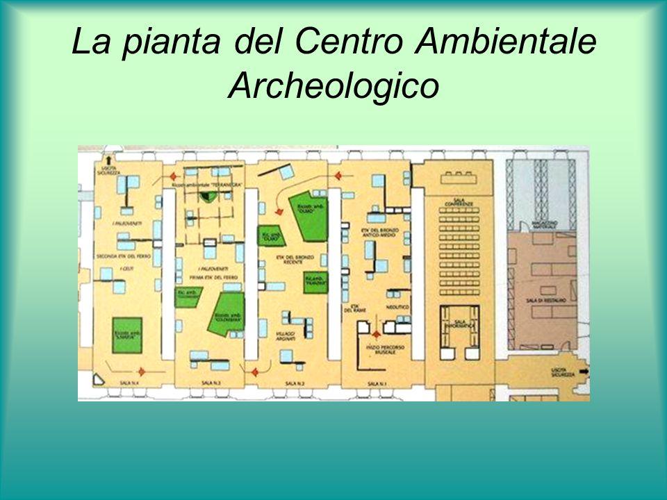 La pianta del Centro Ambientale Archeologico
