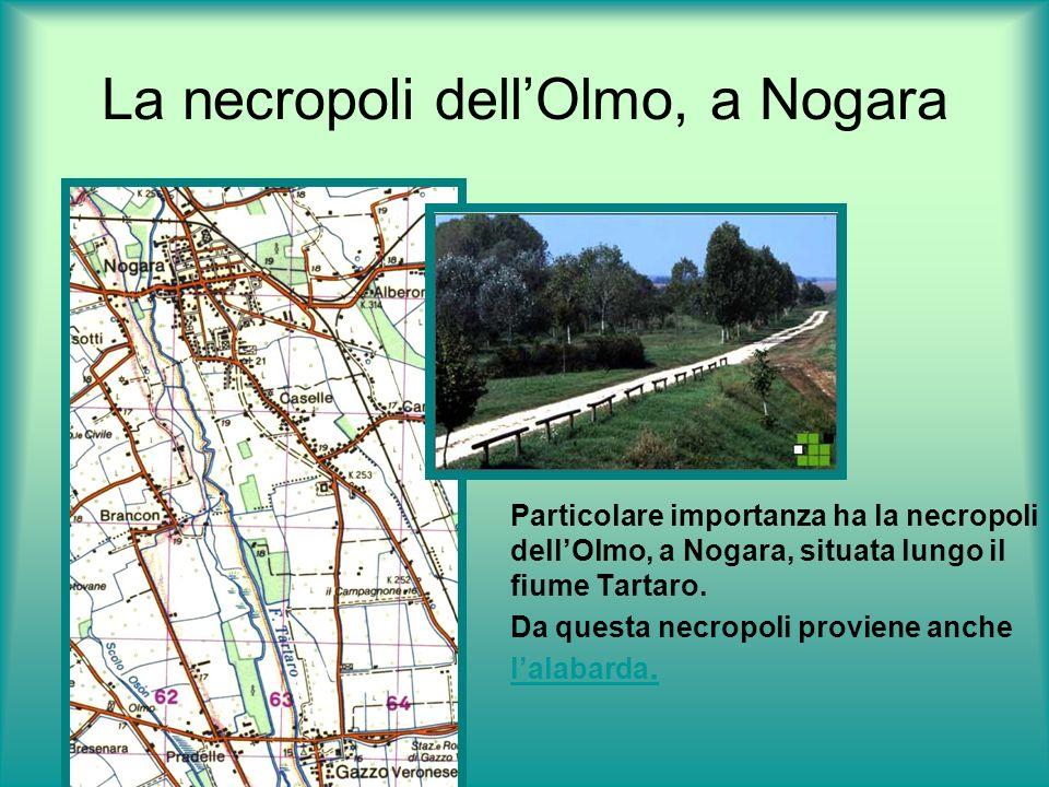 La necropoli dell'Olmo, a Nogara