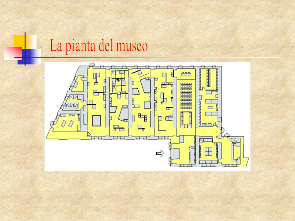 La pianta del museo