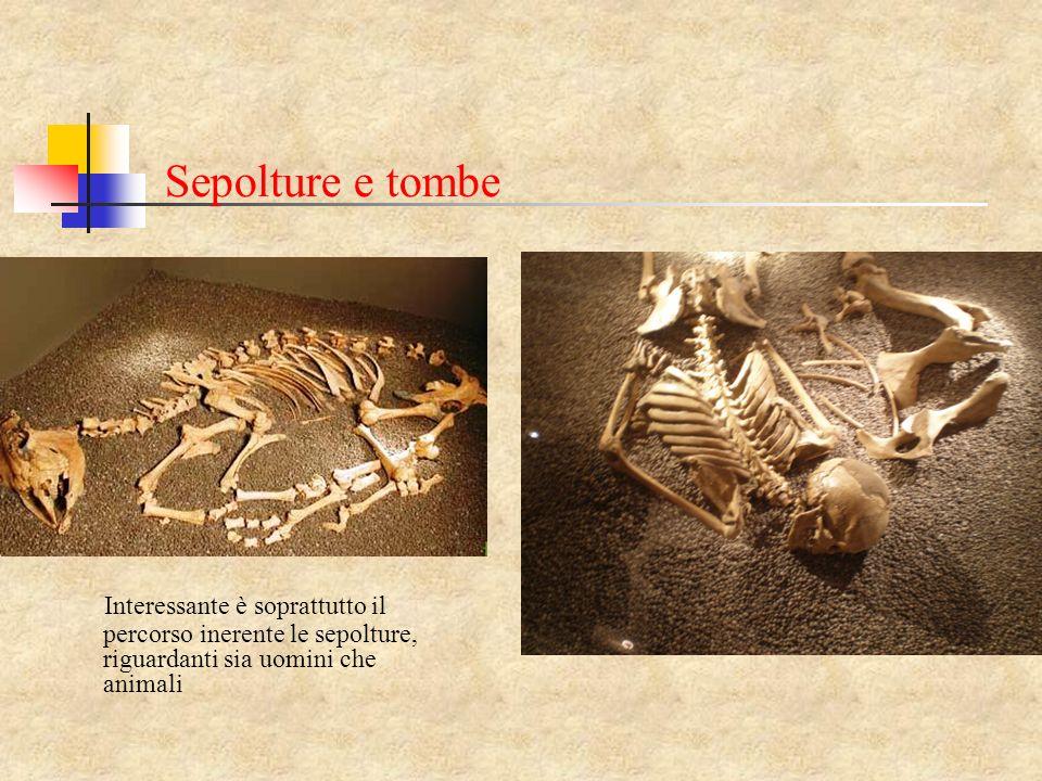 Sepolture e tombe Interessante è soprattutto il percorso inerente le sepolture, riguardanti sia uomini che animali.