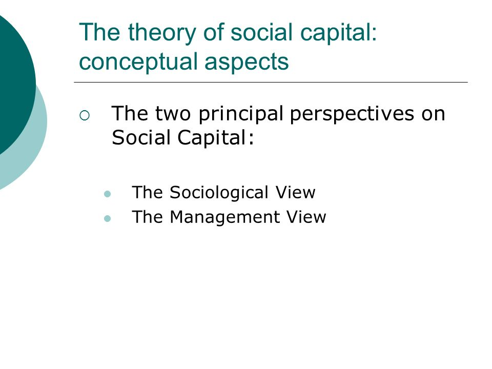 The theory of social capital: conceptual aspects