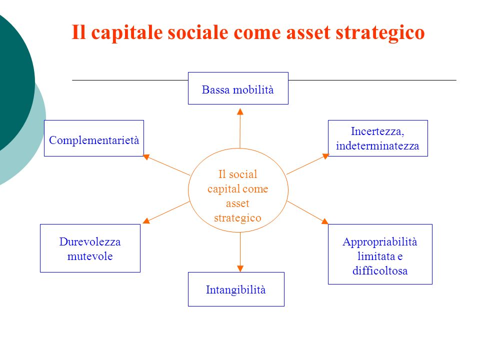 Il capitale sociale come asset strategico