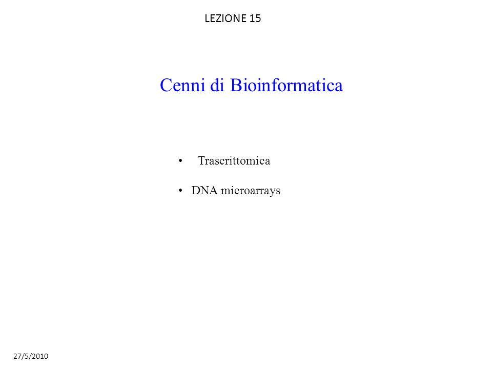 Cenni di Bioinformatica