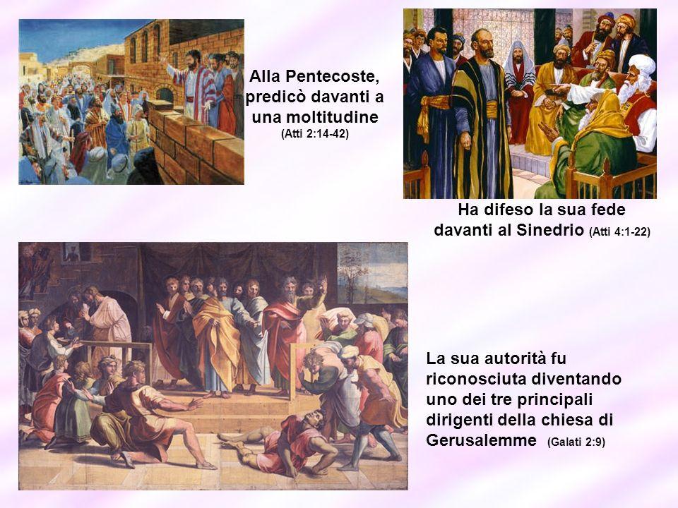 Alla Pentecoste, predicò davanti a una moltitudine (Atti 2:14-42)