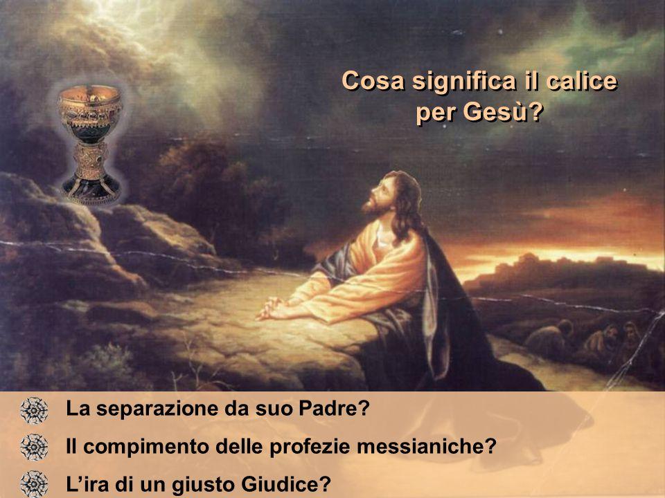 Cosa significa il calice per Gesù