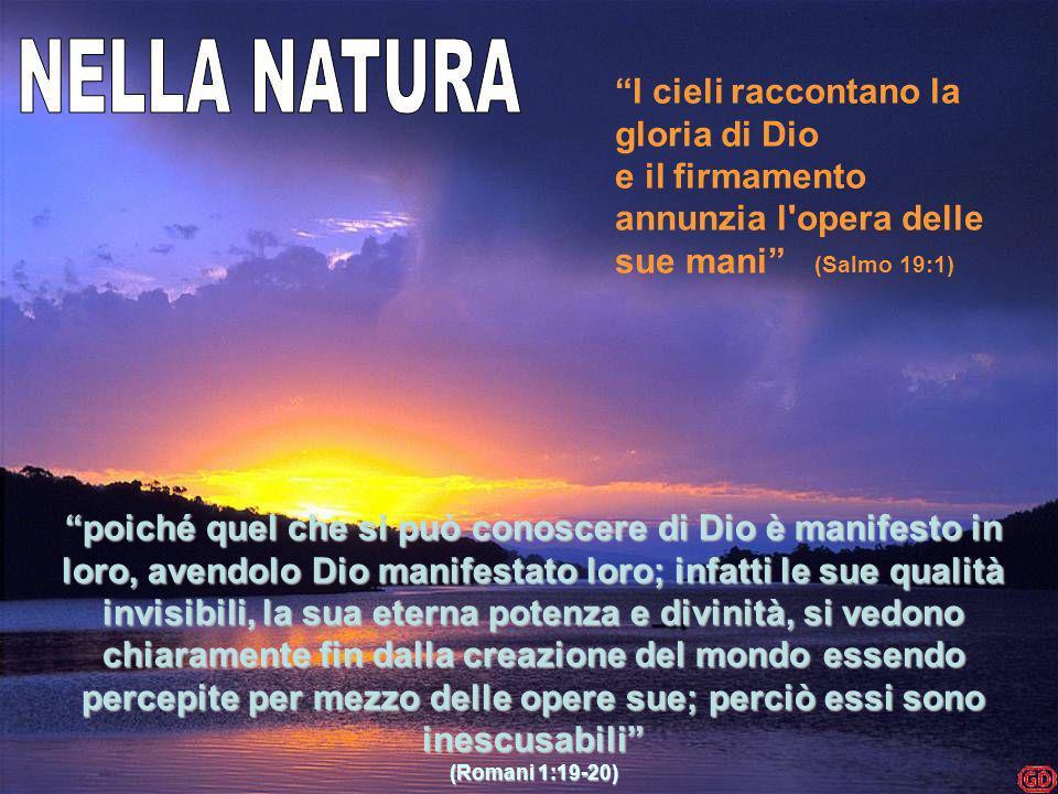NELLA NATURA I cieli raccontano la gloria di Dio e il firmamento annunzia l opera delle sue mani (Salmo 19:1)