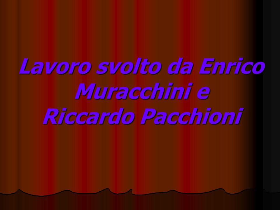 Lavoro svolto da Enrico Muracchini e Riccardo Pacchioni