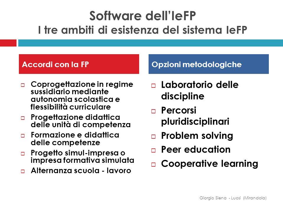 Software dell'IeFP I tre ambiti di esistenza del sistema IeFP