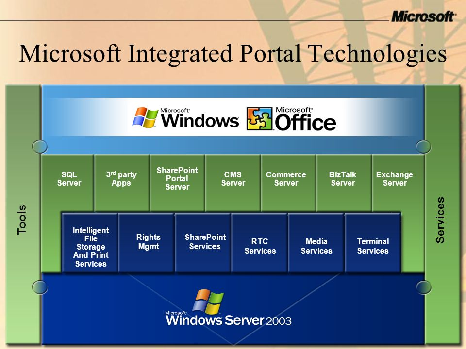 Microsoft Integrated Portal Technologies