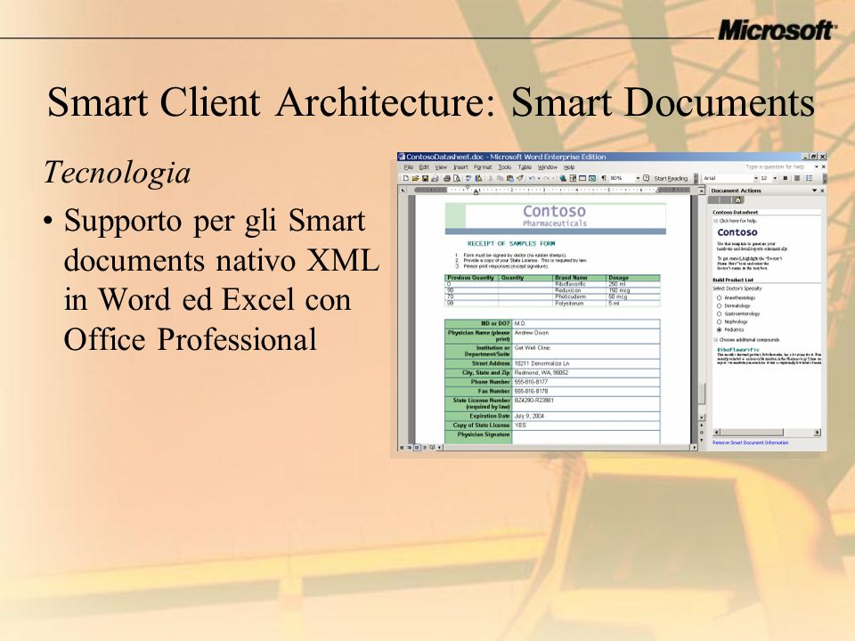 Smart Client Architecture: Smart Documents
