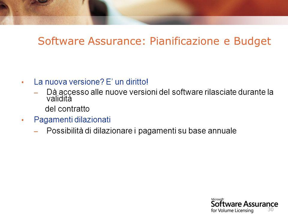 Software Assurance: Pianificazione e Budget