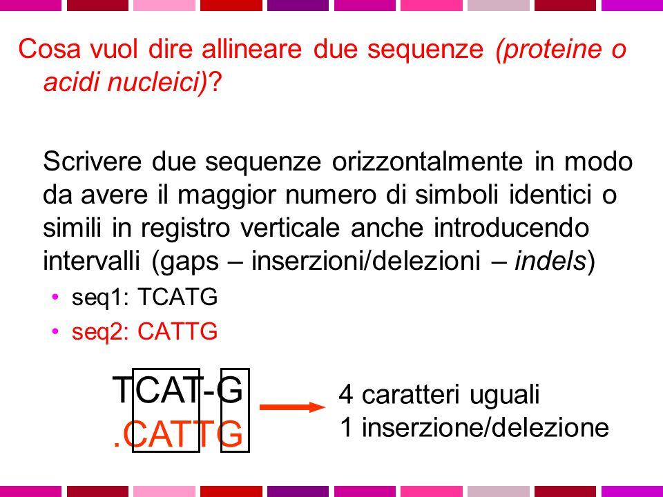 Cosa vuol dire allineare due sequenze (proteine o acidi nucleici)