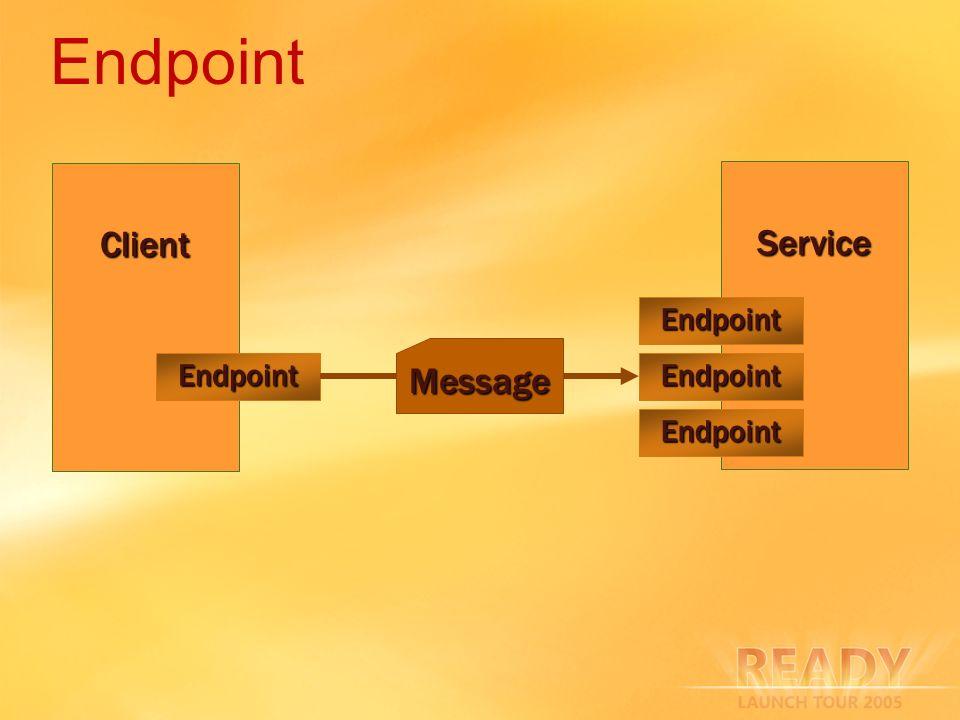Endpoint Client Service Message Endpoint Endpoint Endpoint Endpoint