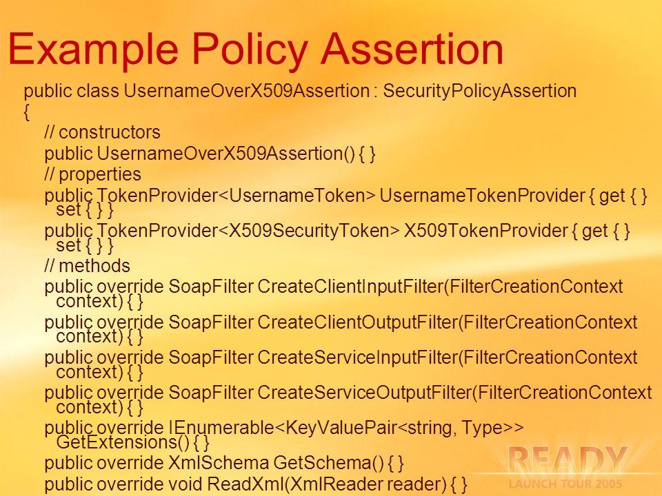 Example Policy Assertion