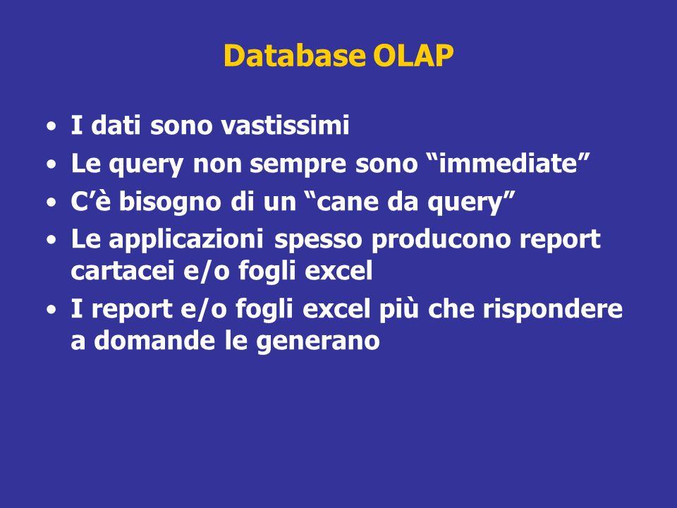 Database OLAP I dati sono vastissimi