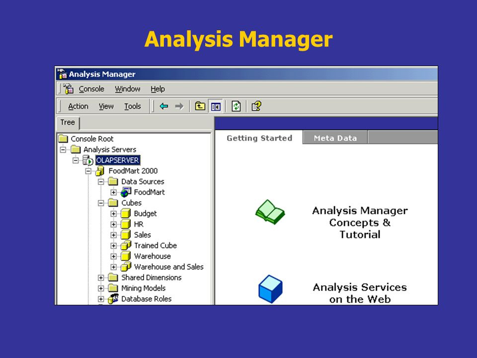 Analysis Manager