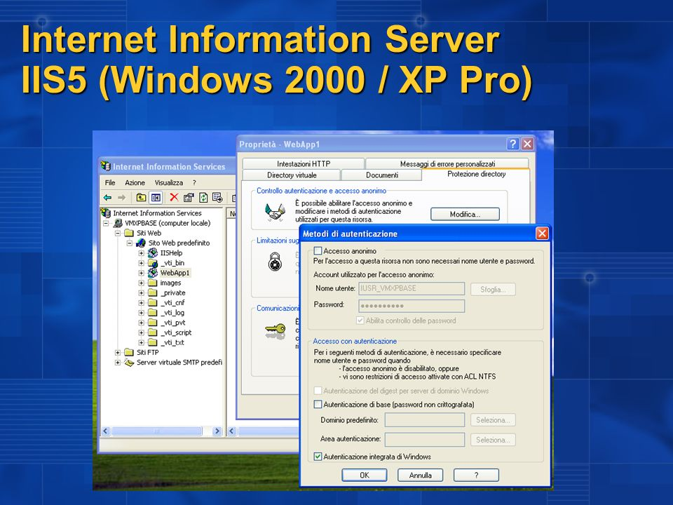 Internet Information Server IIS5 (Windows 2000 / XP Pro)
