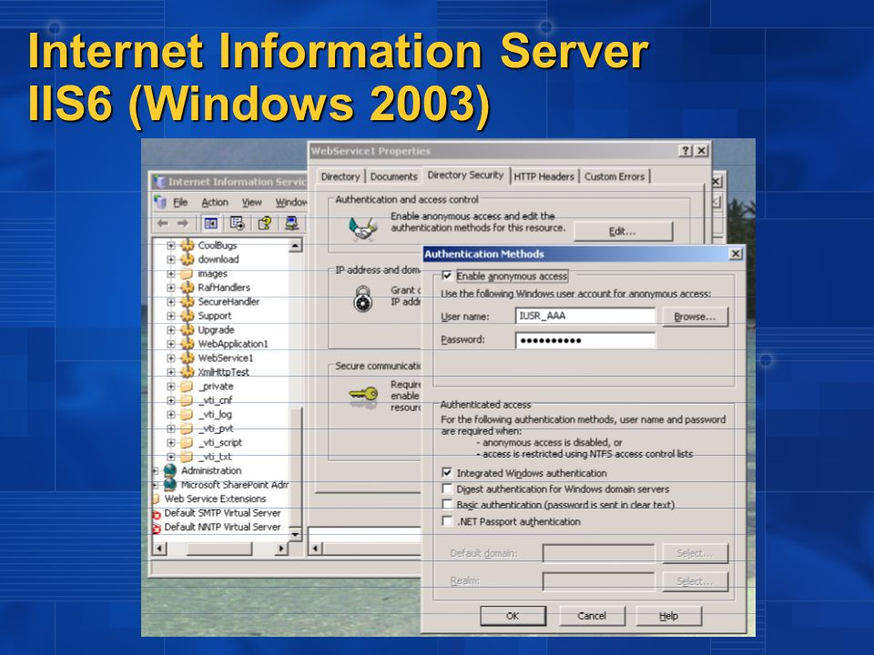 Internet Information Server IIS6 (Windows 2003)