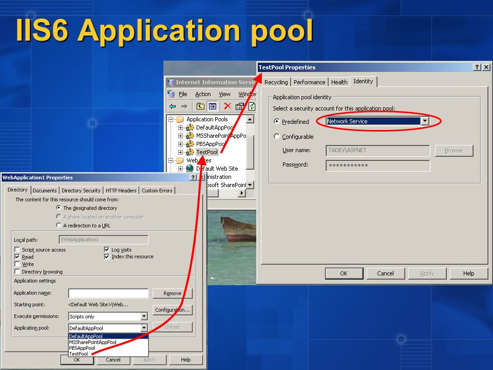 IIS6 Application pool