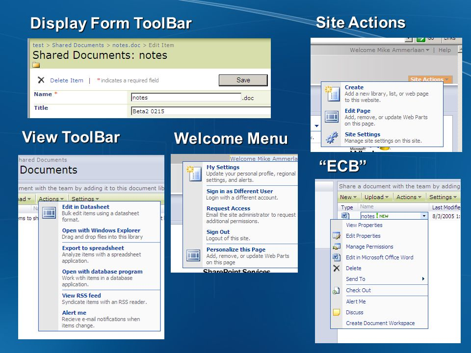 Display Form ToolBar Site Actions View ToolBar Welcome Menu ECB