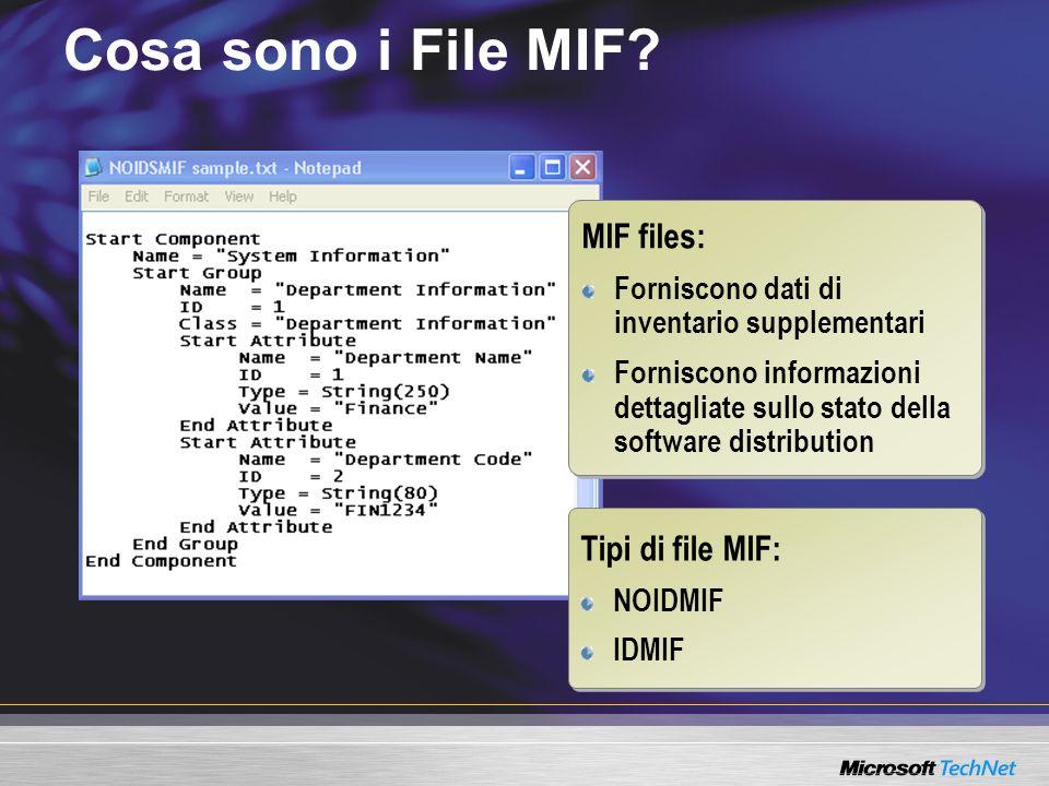 Cosa sono i File MIF MIF files: Tipi di file MIF: