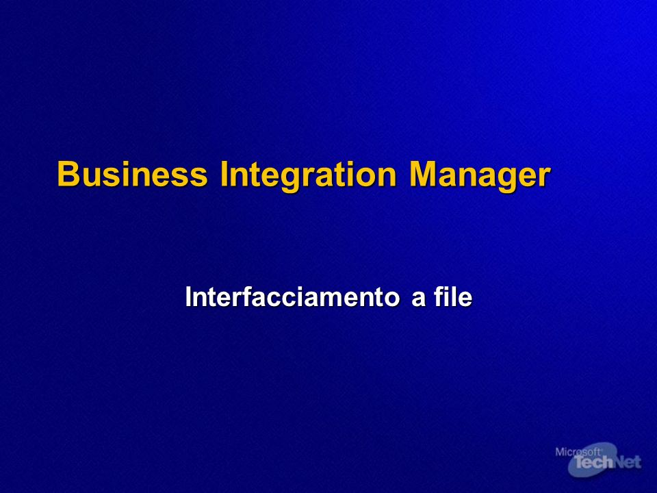 Business Integration Manager
