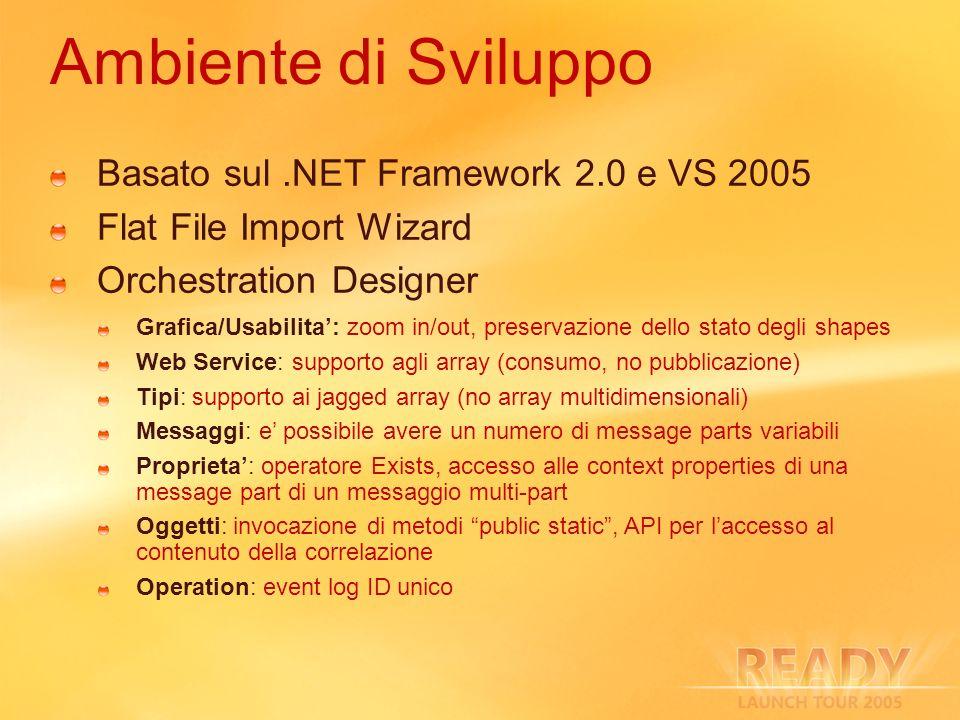 Ambiente di Sviluppo Basato sul .NET Framework 2.0 e VS 2005