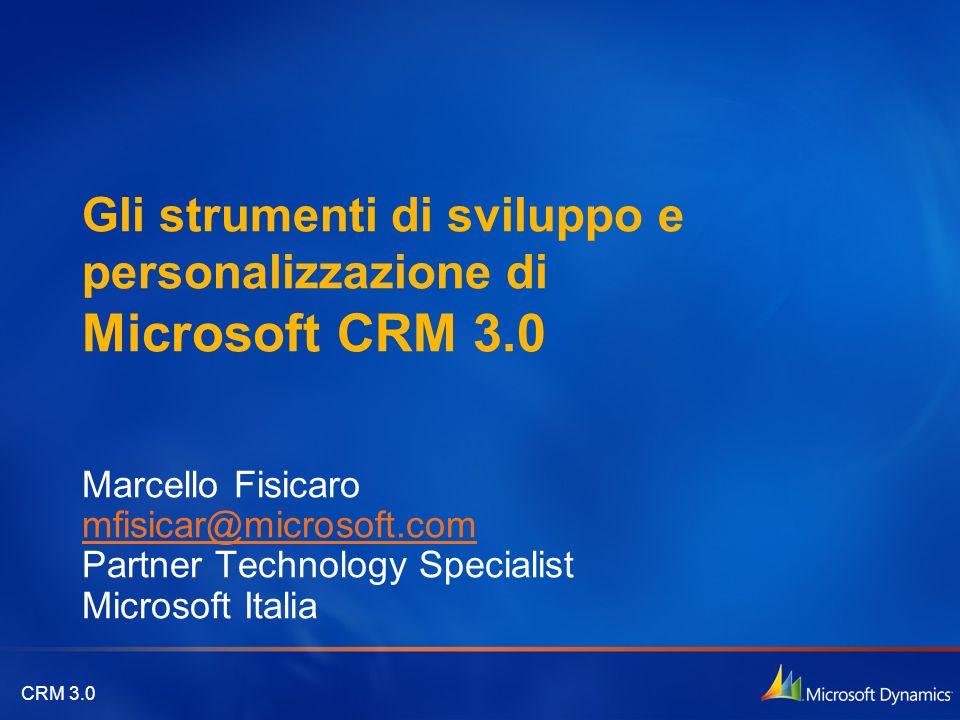 Gli strumenti di sviluppo e personalizzazione di Microsoft CRM 3.0
