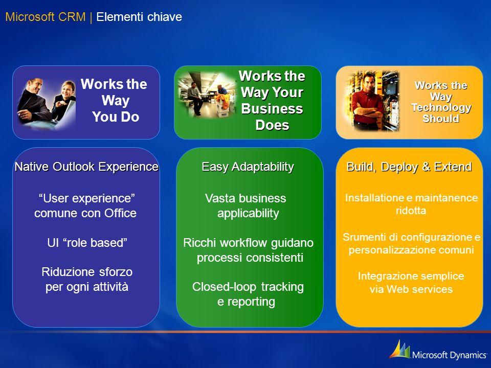 Microsoft CRM | Elementi chiave