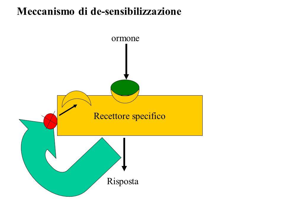 Meccanismo di de-sensibilizzazione