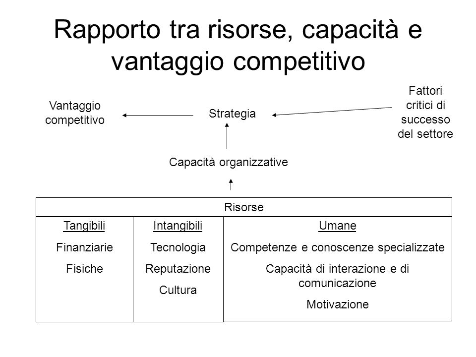 Rapporto tra risorse, capacità e vantaggio competitivo