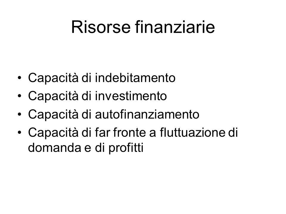Risorse finanziarie Capacità di indebitamento Capacità di investimento