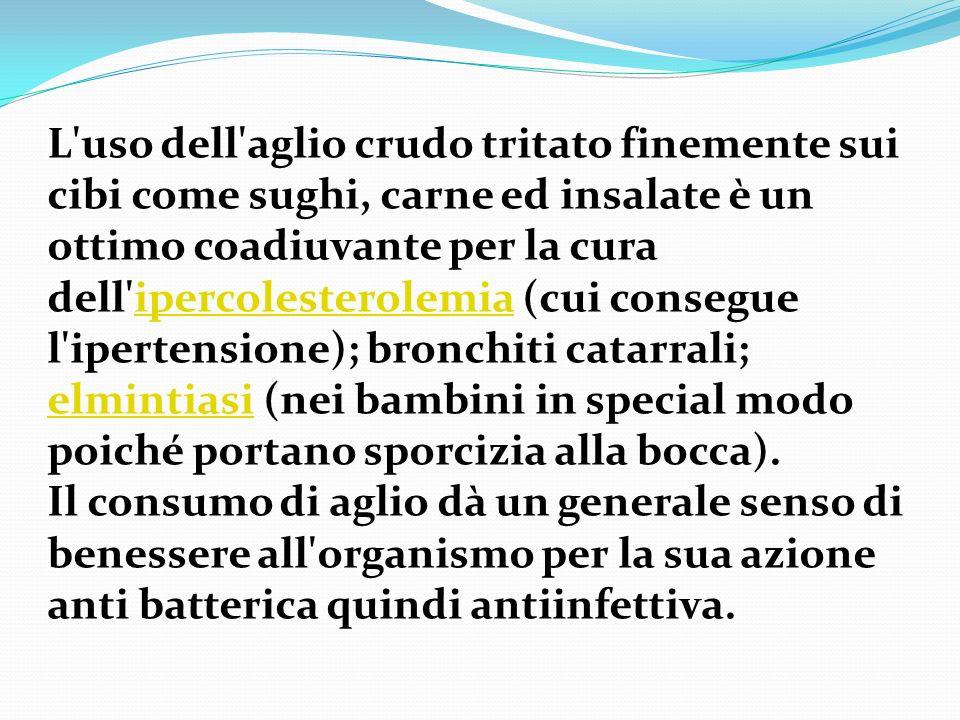 L uso dell aglio crudo tritato finemente sui cibi come sughi, carne ed insalate è un ottimo coadiuvante per la cura dell ipercolesterolemia (cui consegue l ipertensione); bronchiti catarrali; elmintiasi (nei bambini in special modo poiché portano sporcizia alla bocca).