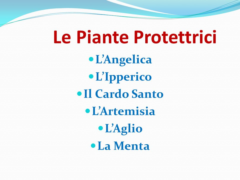 Le Piante Protettrici L'Angelica L'Ipperico Il Cardo Santo L'Artemisia