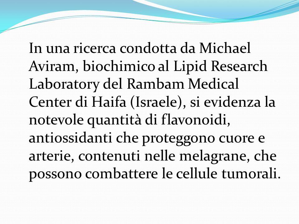 In una ricerca condotta da Michael Aviram, biochimico al Lipid Research Laboratory del Rambam Medical Center di Haifa (Israele), si evidenza la notevole quantità di flavonoidi, antiossidanti che proteggono cuore e arterie, contenuti nelle melagrane, che possono combattere le cellule tumorali.
