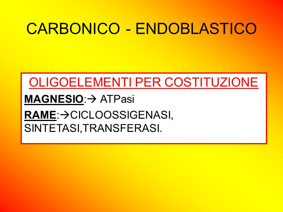 CARBONICO - ENDOBLASTICO