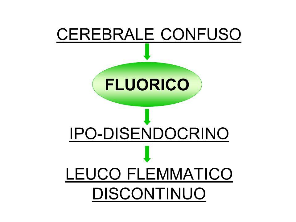 CEREBRALE CONFUSO IPO-DISENDOCRINO LEUCO FLEMMATICO DISCONTINUO
