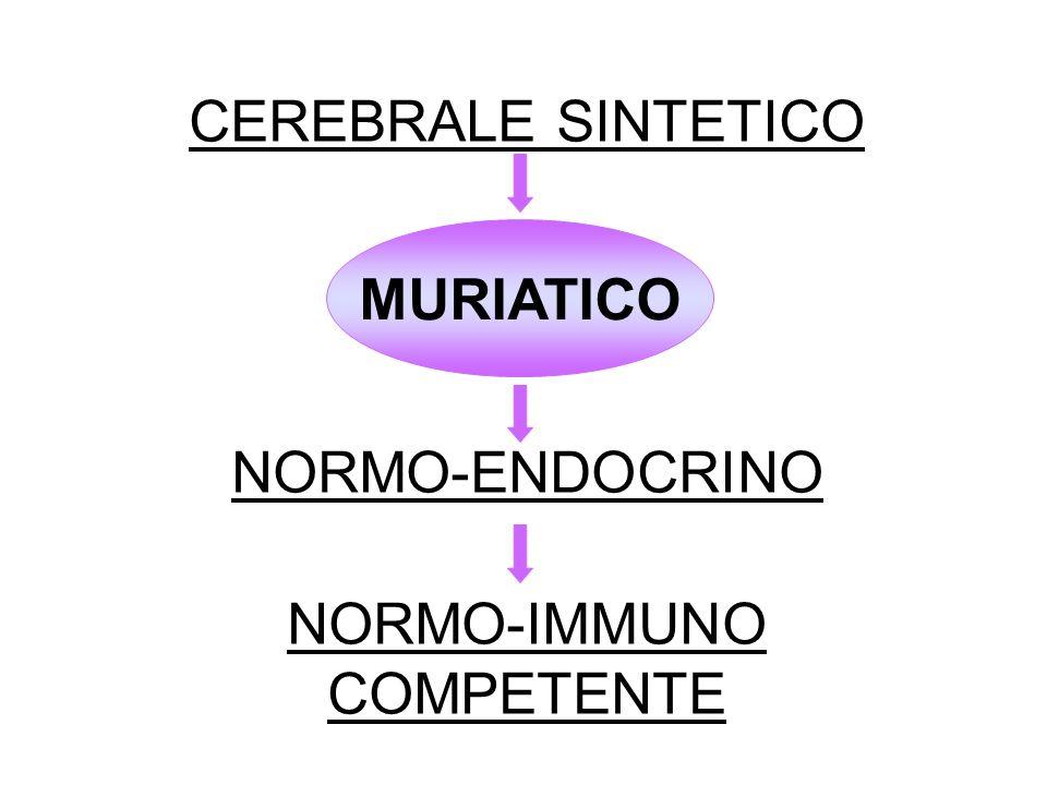 CEREBRALE SINTETICO NORMO-ENDOCRINO NORMO-IMMUNO COMPETENTE
