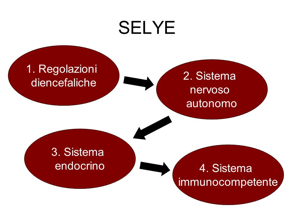 SELYE 1. Regolazioni diencefaliche 2. Sistema nervoso autonomo