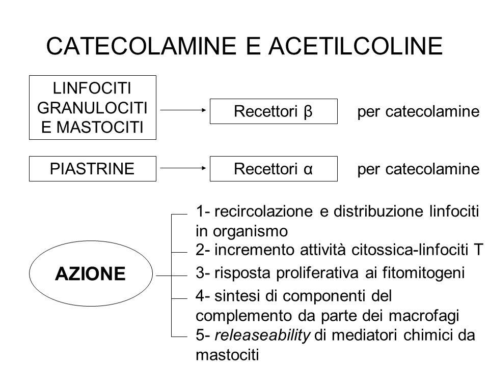 CATECOLAMINE E ACETILCOLINE