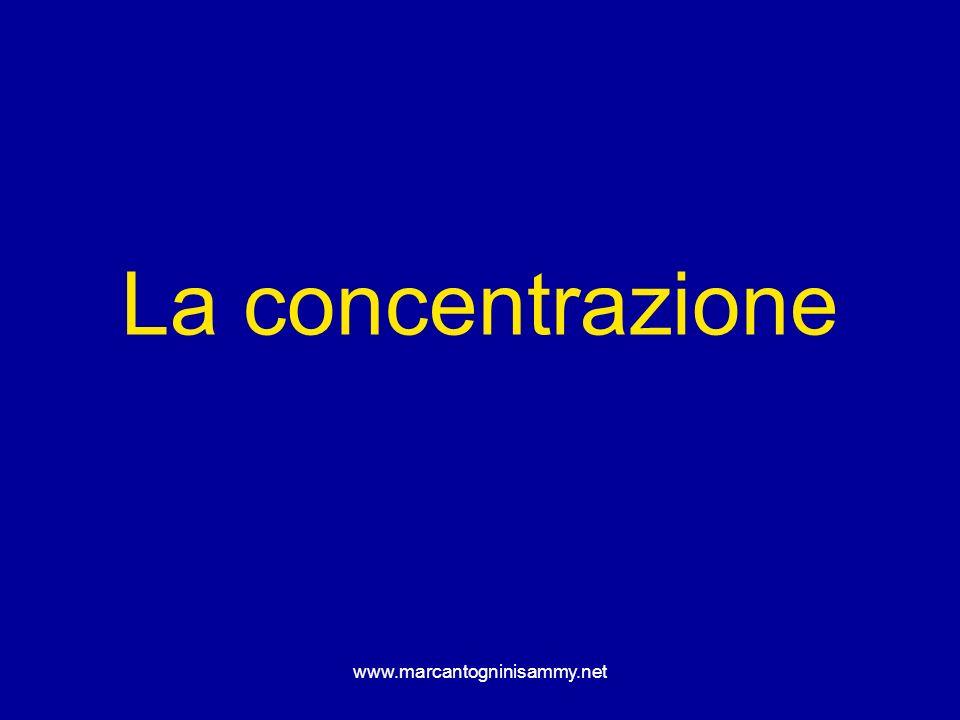 La concentrazione www.marcantogninisammy.net