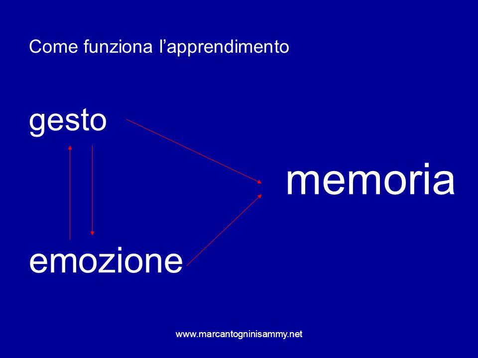 memoria emozione gesto Come funziona l'apprendimento