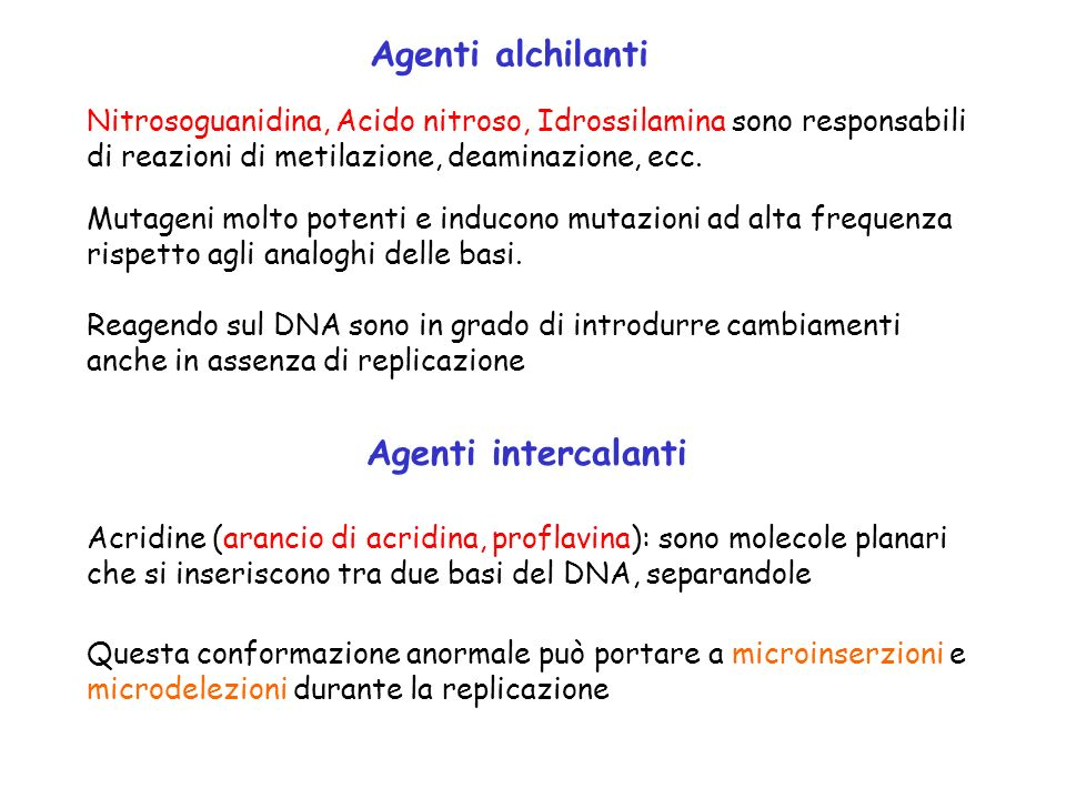 Agenti alchilanti Agenti intercalanti