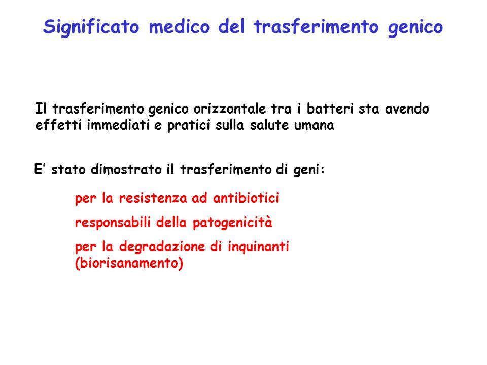 Significato medico del trasferimento genico