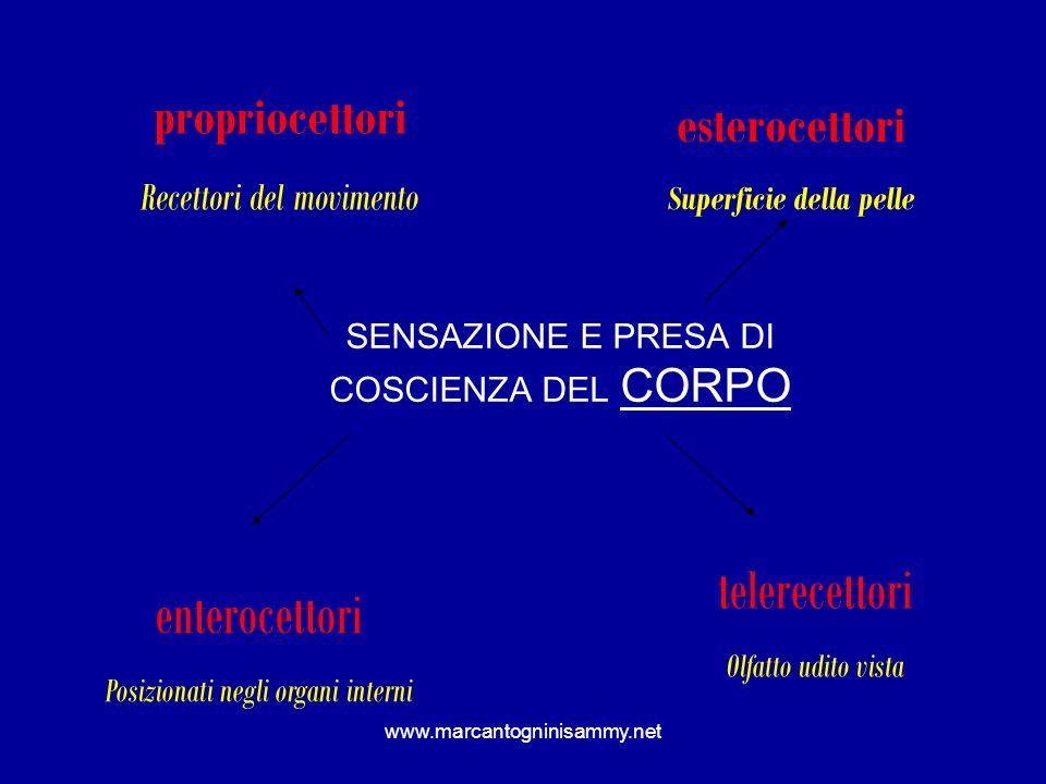 SENSAZIONE E PRESA DI COSCIENZA DEL CORPO