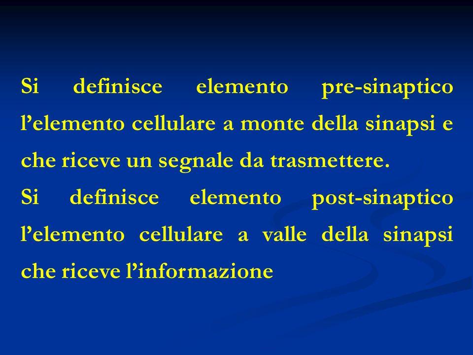 Si definisce elemento pre-sinaptico l'elemento cellulare a monte della sinapsi e che riceve un segnale da trasmettere.